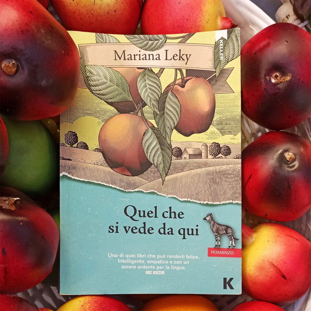 """Quel che si vede da qui"" di Mariana Leky"